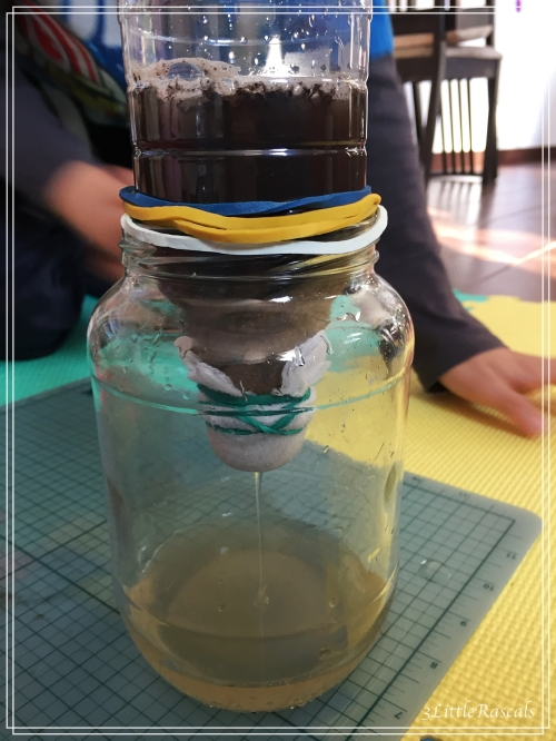 water filter experiment